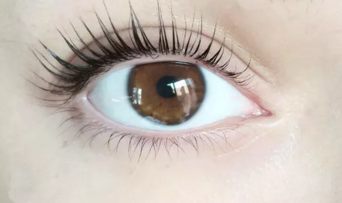 Lash Lift Now Available: An Alternative To Lash Extensions